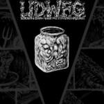 U.D.W.F.G. vol.1