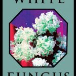 WHITE FUNGUS #16
